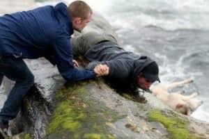 Dois noruegueses resgatando uma ovelha no oceano 1
