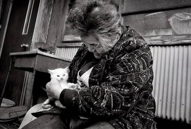 Série documenta a história de amor entre uma mulher e um gato resgatado das ruas 2