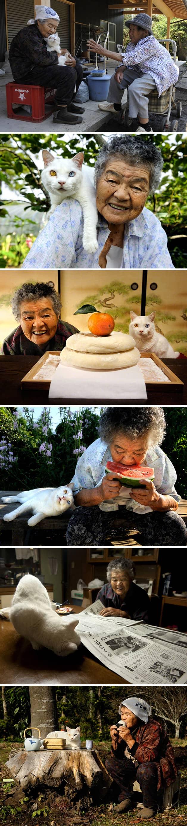 Série documenta a história de amor entre uma mulher e um gato resgatado das ruas 3