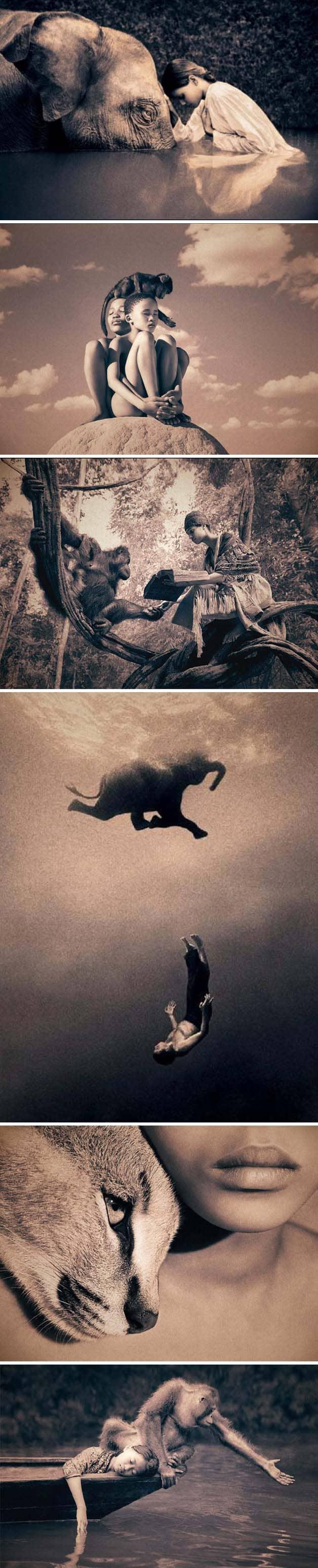 Fotógrafo registra momentos de harmonia entre homem e natureza 3