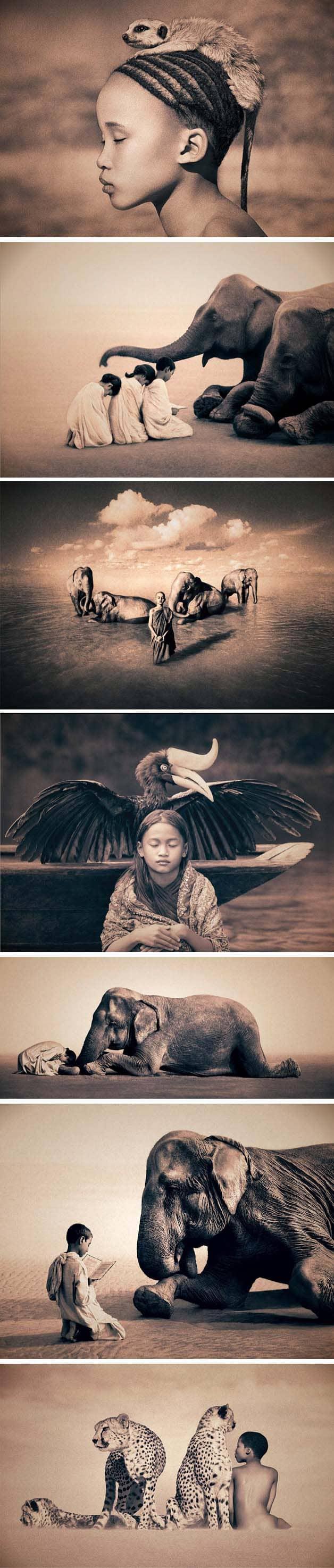 Fotógrafo registra momentos de harmonia entre homem e natureza 4