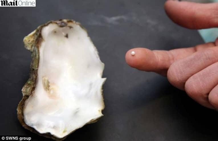 Rapaz cura a ressaca com ostra e encontra pérola rara 4