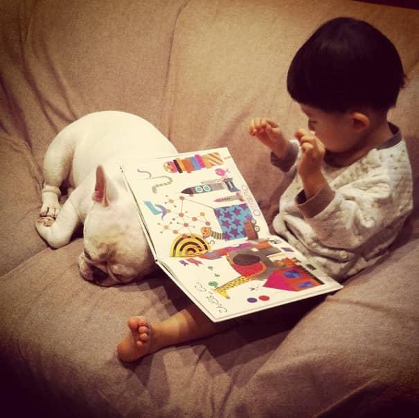 Criança japonesa com seu amigo Bulldog mostram amizade verdadeira e muito fofa! 13