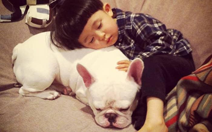 Criança japonesa com seu amigo Bulldog mostram amizade verdadeira e muito fofa! 2