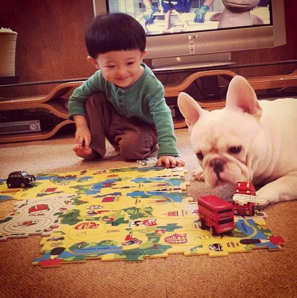 Criança japonesa com seu amigo Bulldog mostram amizade verdadeira e muito fofa! 15