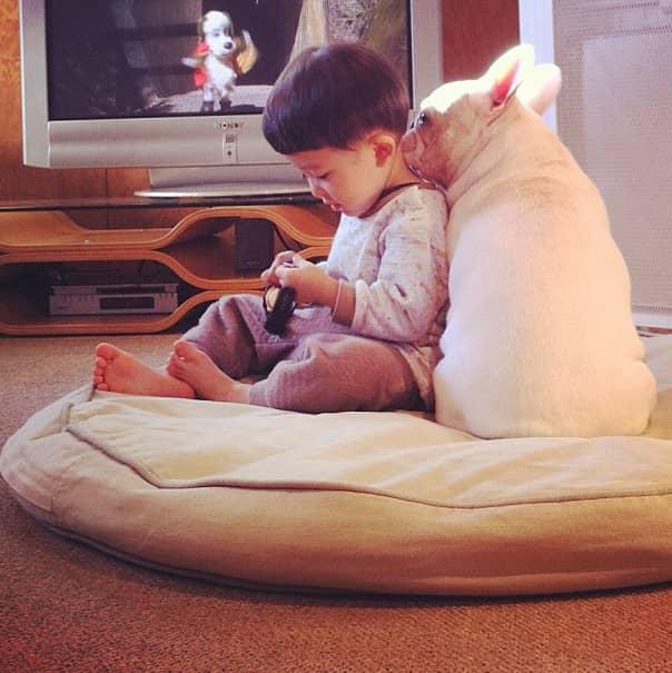Criança japonesa com seu amigo Bulldog mostram amizade verdadeira e muito fofa! 16