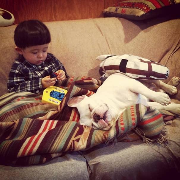 Criança japonesa com seu amigo Bulldog mostram amizade verdadeira e muito fofa! 18