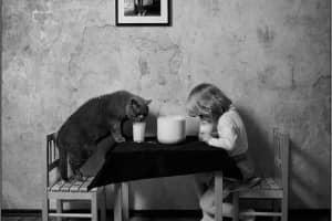 A amizade de uma menina e seu gato numa linda série de fotos feita pelo seu pai 1