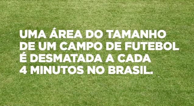 """WWF """"desmata"""" campo de futebol ao vivo durante jogo da Seleção Brasileira 1"""