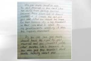 Estudante de 10 anos escreve redação em defesa do casamento gay 2
