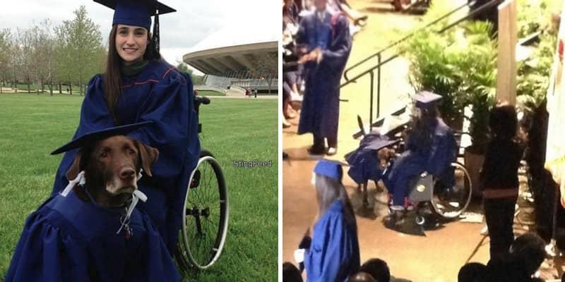 Universitária conclui graduação e recebe o diploma junto com cão de apoio 1