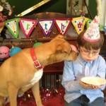 Conheçam uma cachorra que foi resgatada em estado terminal e mudou vida de um garoto autista 8