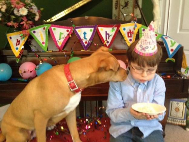 Conheçam uma cachorra que foi resgatada em estado terminal e mudou vida de um garoto autista 1
