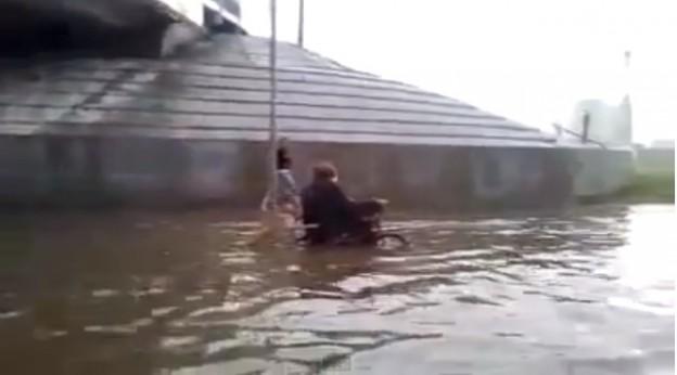 Cão ajuda cadeirante durante inundação 1
