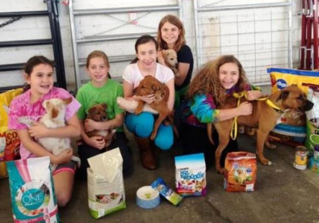 Menina de 9 anos desiste de presentes para poder ajudar abrigo de animais em seu aniversário 1