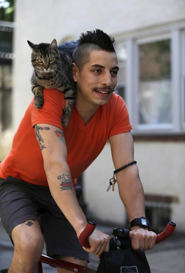 gato_bike13