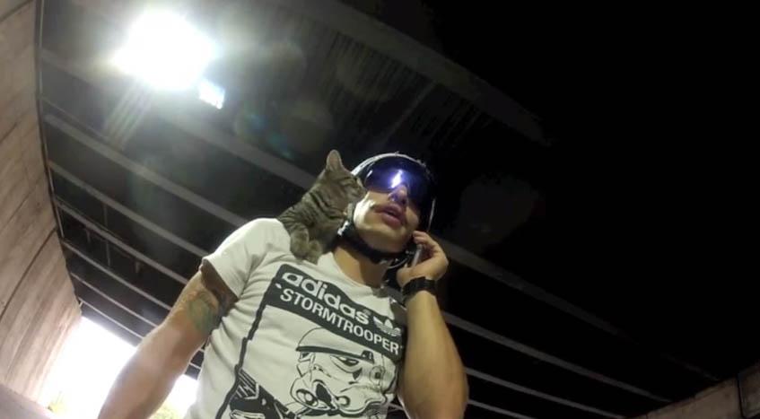 gato_bike3