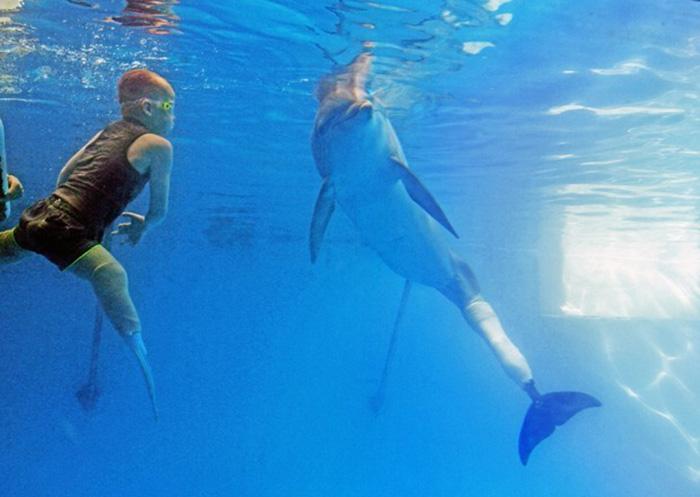 Garoto amputado realiza sonho de nadar com golfinho com prótese de cauda 4