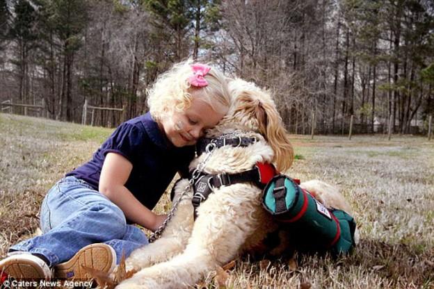 Cachorro carrega balões de oxigênio para ajudar menina que precisa de ajuda para respirar 1