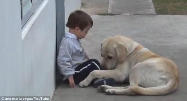 Cachorro faz de tudo para conseguir amizade de garoto com síndrome de Down 1