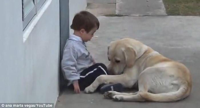 Cachorro faz de tudo para conseguir amizade de garoto com síndrome de Down 2