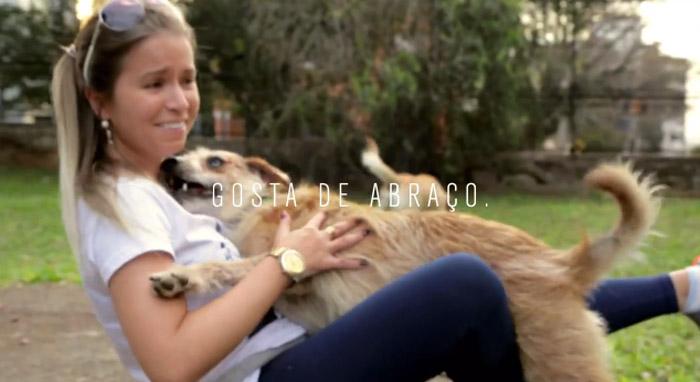 Open Bar Canino promove adoção que foge dos padrões de raças 1