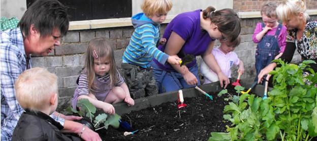 Cidade inglesa é tomada por hortas que oferecem alimentos gratuitos a seus moradores 2