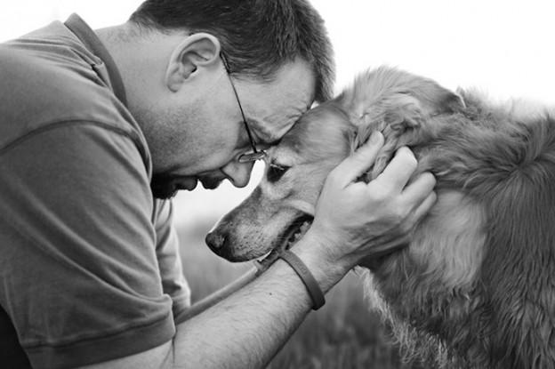 Série retrata donos se despedindo de seus cães idosos 2