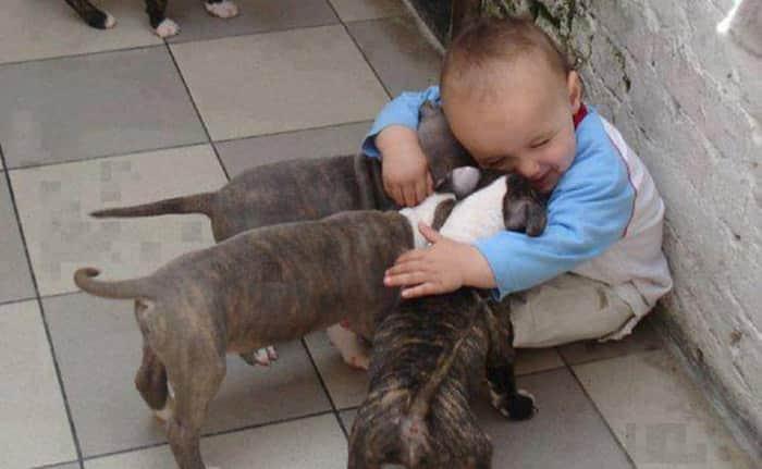 22 fotos que provam que animais e crianças fazem bem um para o outro 3