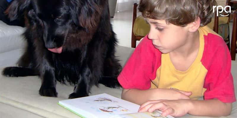 Cães terapeutas ajudam crianças com dificuldades pedagógicas a aprenderem melhor 3