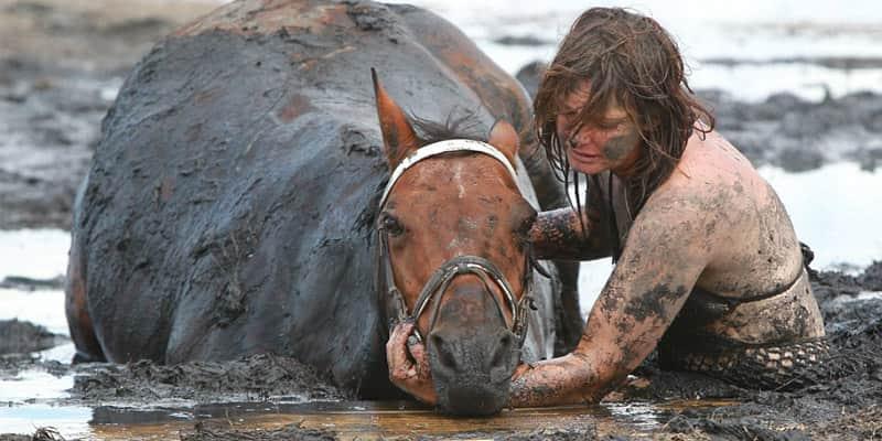 Australiana fica três horas na lama tentando salvar cavalo preso  2