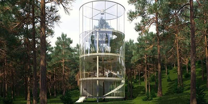 Para os apaixonados pela natureza: casa na árvore no meio da floresta 2