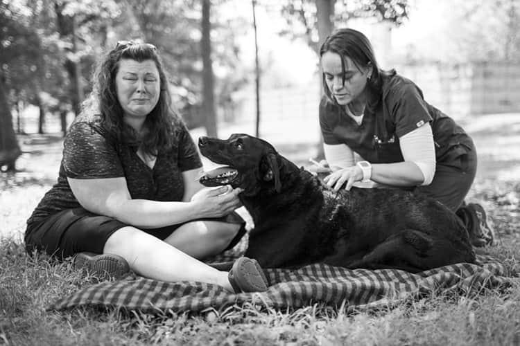 duke-robyn-arouty-cachorro-ensaio-eutanasia-19