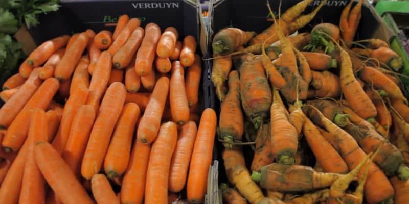 Projetos incentivam o consumo de frutas feias e ajudam a reduzir o desperdício