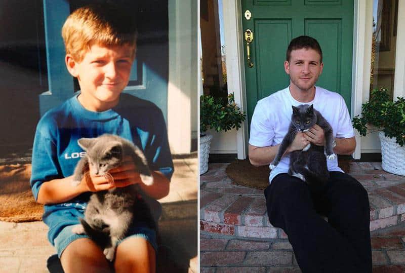 antes-depois-animais-12