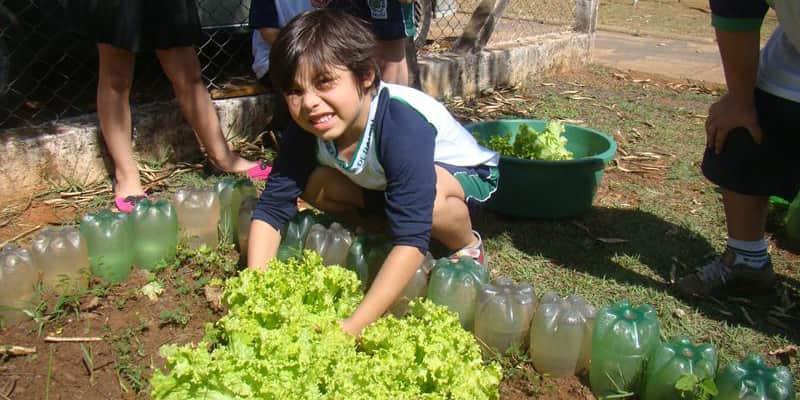Programa social de empresa ajuda milhares de crianças a combater a obesidade e desnutrição no Brasil 1
