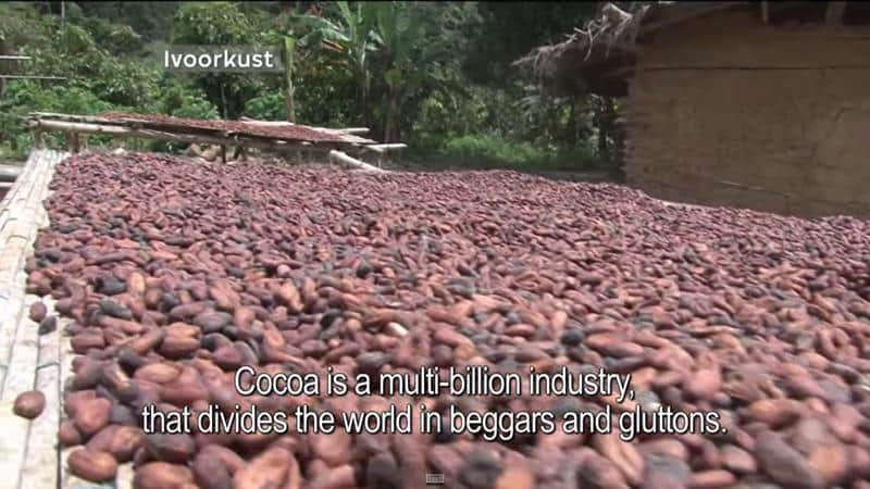 agricultores-chocolate-1