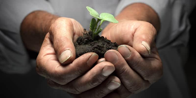 Você já ouviu falar de empresas que não buscam apenas o lucro, mas minimizar o impacto social e ambiental? 14