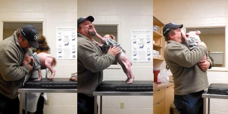 Vídeo faz sucesso na web ao mostrar pit bull filhote feliz em rever homem que o salvou 1