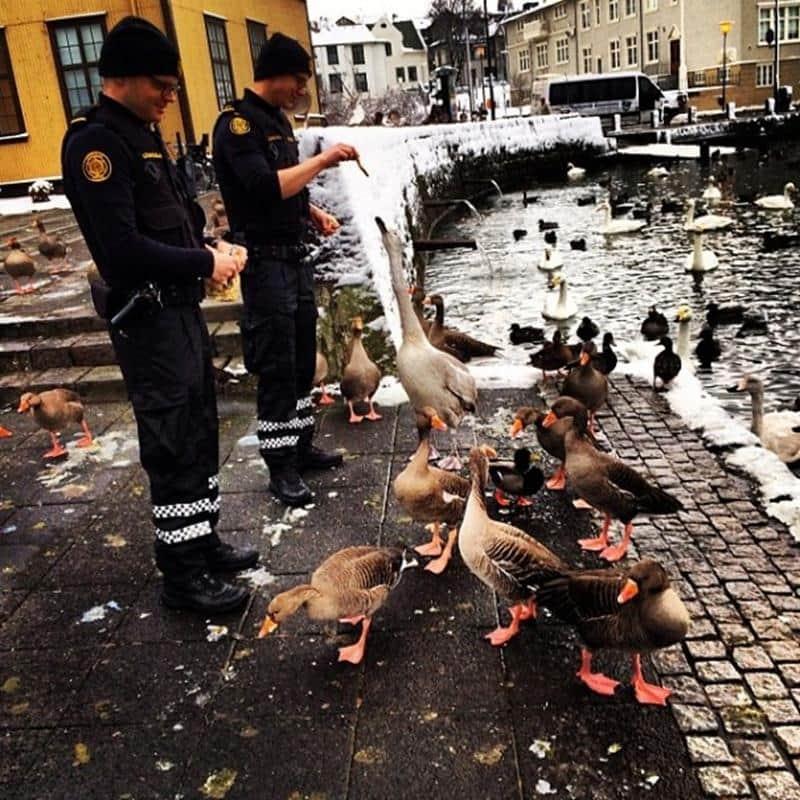 policia-islandia-9