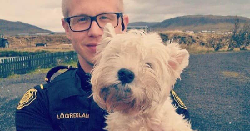 A polícia da Islândia tem um Instagram cheio de cachorrinhos, gatinhos e sorvete 2