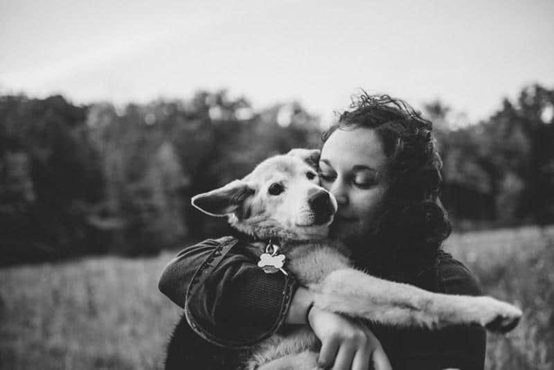 adeus-cachorrinha-17