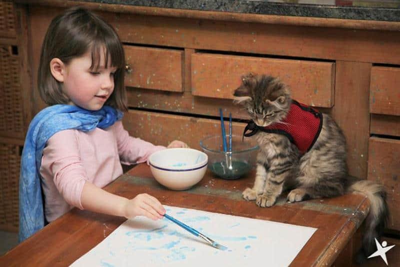 amizade-gato-terapia-1