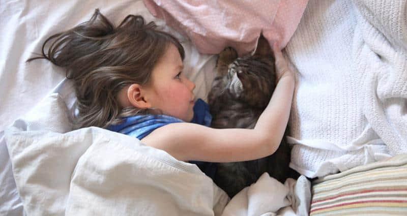 amizade-gato-terapia-10