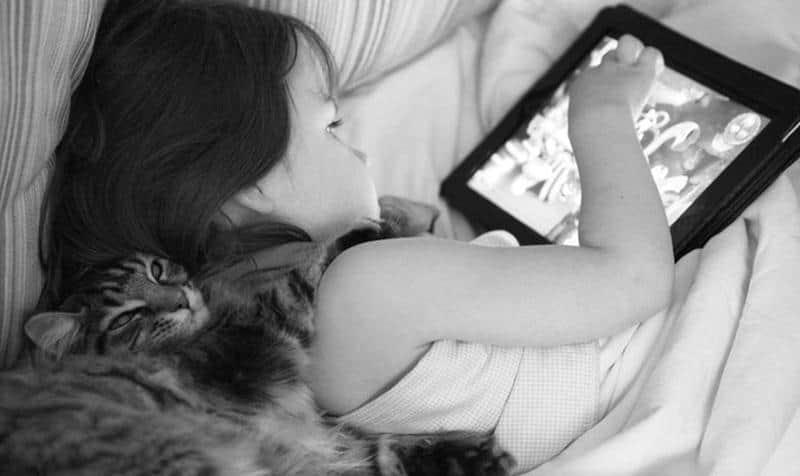 amizade-gato-terapia-18