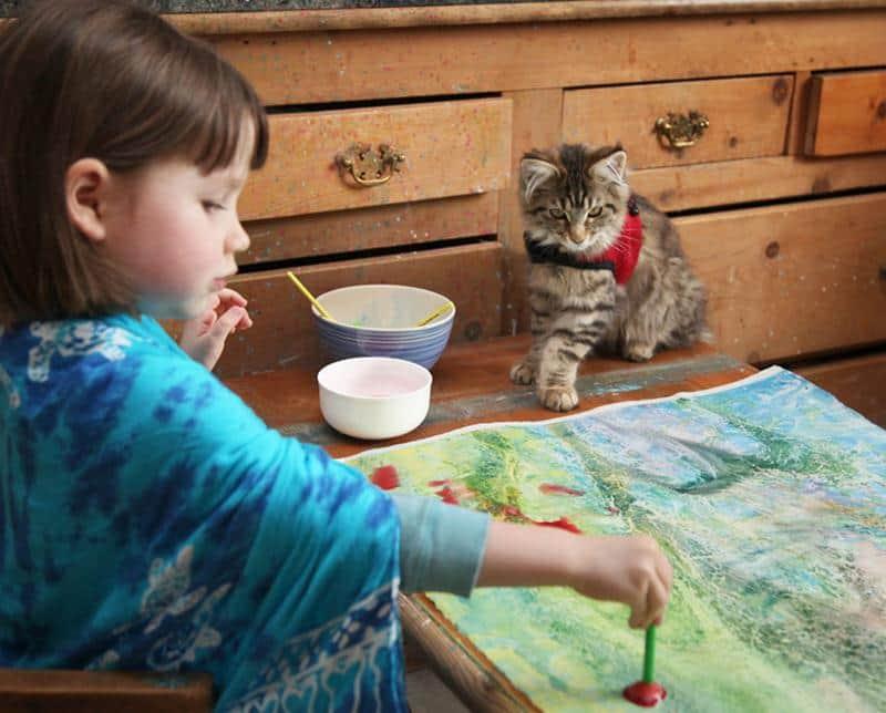 amizade-gato-terapia-6