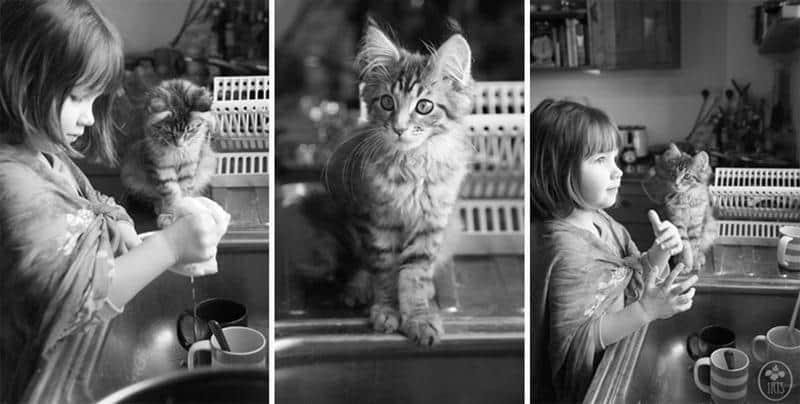 amizade-gato-terapia-9