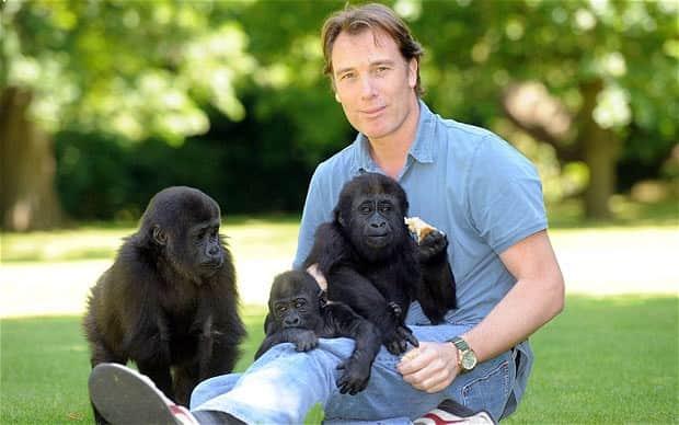 Conheça o milionário que dedica sua vida criando gorilas e libertando-os para a vida selvagem 1
