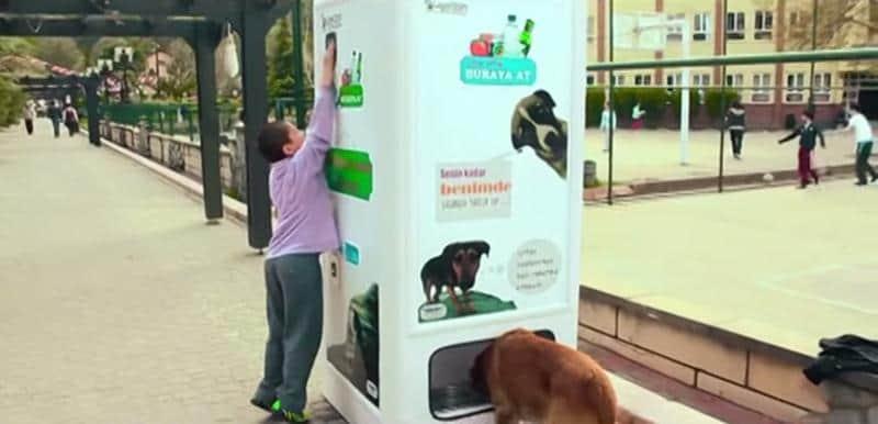 Empresa instala máquina que alimenta cachorros de rua e ainda incentiva as pessoas a reciclar 1