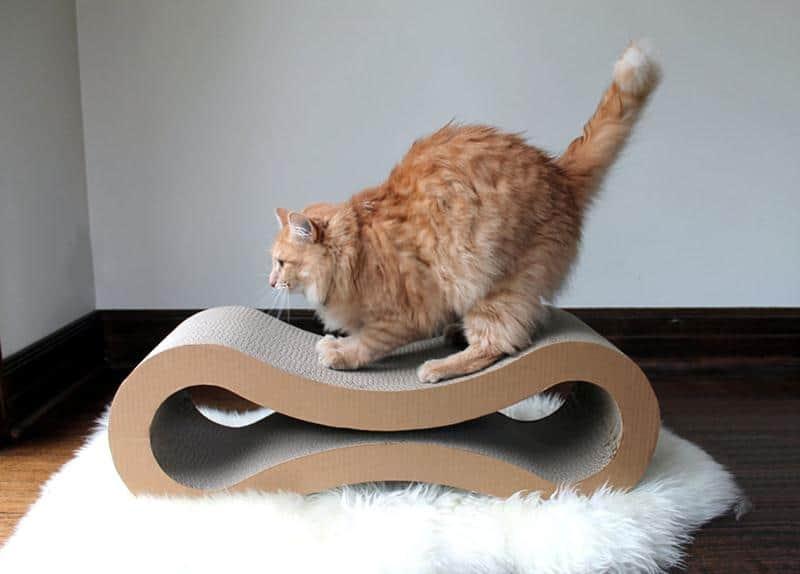 mobilia-gato-26